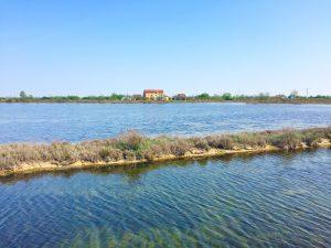 La laguna veneziana a Lio Piccolo