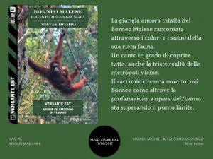 Borneo malese, il canto della giungla